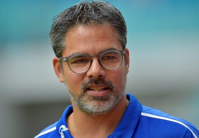 David Wagner will lead Schalke on September 28, 2019